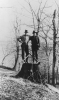 Lumberjacks. Early photo of Walter & Roy Reuther.  1928